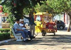在一点城市摆正在巴西, Monte Siao MG 免版税库存图片
