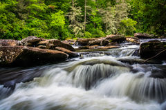 在一点河的小瀑布,在杜邦状态森林里,北卡罗来纳 免版税库存照片