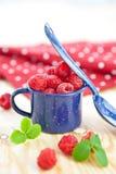 在一点葡萄酒杯子的新鲜的莓果 免版税库存照片