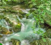 在一点Stony Creek的小瀑布 库存图片