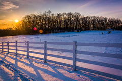 在一片农田的日落在农村卡洛尔县,马里兰 库存照片