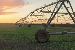 在一片农田的现代灌溉系统在日落 库存照片