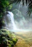 在一片密集的热带雨林的艺术瀑布 库存照片