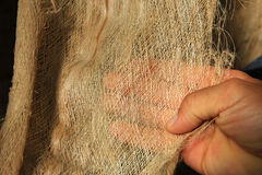 在一片干燥棕榈叶的织地不很细纤维 免版税库存图片