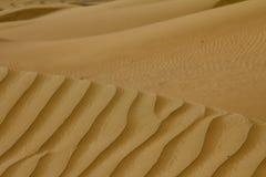 在一片沙漠铺沙样式在迪拜,阿拉伯联合酋长国 库存图片
