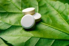 在一片绿色叶子的同种疗法药物 库存图片