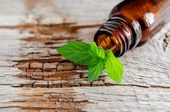 在一片老木背景和新鲜薄荷叶子的小玻璃瓶 芳香疗法和温泉成份 免版税图库摄影