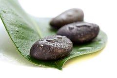 在一片绿色叶子的三块湿温泉石头,在白色 免版税库存照片