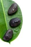 在一片绿色叶子的三块湿温泉石头 免版税库存照片