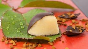 在一片绿色叶子的小杏仁饼橙色巧克力糖 库存图片