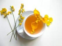 在一白色杯的茶有黄色花的 免版税库存照片