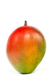 Mango_02 库存图片