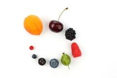在一白色backgrou的一个圈子计划的不同的水多的莓果 免版税库存图片