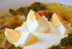 在一碗的煮沸的鸡蛋汤 库存照片