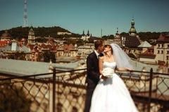在一种伟大的都市风景的前面的婚姻的夫妇亲吻在利沃夫州 库存图片