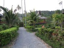在一种手段的走道在泰国 库存照片