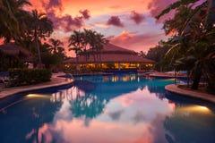 在一种热带手段的豪华游泳池在日落 库存图片