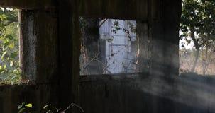 在一股老大厦以及烟的被毁坏的由太阳的光的窗口和尘土 股票视频