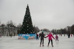 在一自由滑冰场的人乘驾 免版税图库摄影