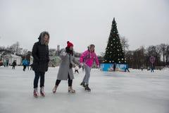 在一自由滑冰场的人乘驾 库存图片
