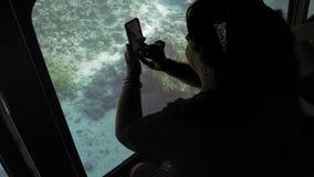 在一艘潜水艇上的资深女性成人游人海底照片鱼的观看的珊瑚礁的在智能手机的 股票录像