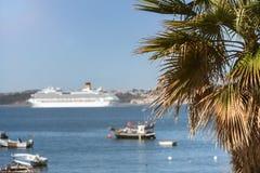 在一艘现代游轮前面的异乎寻常的棕榈树 免版税图库摄影