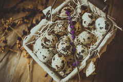 在一被排行的铁丝网筐的鹌鹑蛋,在秸杆,与米黄干花和淡紫色 免版税库存照片