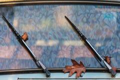 在一辆经典汽车的刮水器的之间秋叶 免版税库存照片
