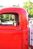 在一辆老卡车的狗 库存照片