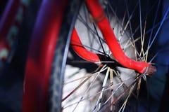 在一辆老自行车的轮子 库存图片
