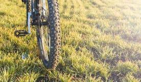 在一辆自行车的特写镜头在后面 免版税库存照片