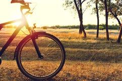 在一辆自行车的秋天步行在太阳通过自行车发光的秋天森林里 库存图片