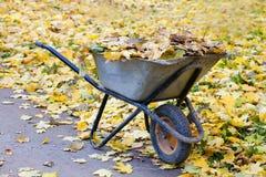 在一辆绿色独轮车的收集的秋叶 秋天时间概念 库存照片