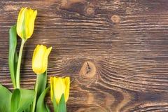 在一边的三朵黄色花在一张木黑暗的桌上 库存图片