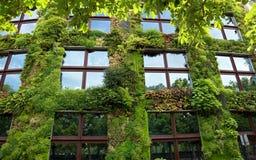 巴黎-在一部分的绿色墙壁的Quai Branly Mu的外部 库存图片