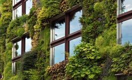 巴黎-在一部分的绿色墙壁的Quai Branly Mu的外部 免版税库存图片