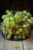 在一铁丝网筐的成熟水多的白色玫瑰香葡萄在木桌,选择聚焦上 库存照片