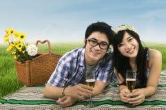 在一顿野餐的夫妇在草甸 库存图片