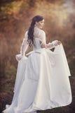 在一件古板的礼服的华美的深色的秀丽 免版税库存照片
