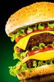 在一黑暗地绿色的鲜美和开胃汉堡包 免版税库存图片