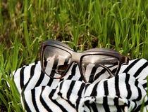 在一件镶边披肩的太阳镜 免版税图库摄影