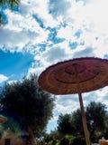 在一acquapark的一把异乎寻常的沙滩伞在意大利的南部 图库摄影