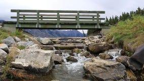 在一strem的一座桥梁在Johnson湖在加拿大罗基斯班夫亚伯大加拿大 股票视频