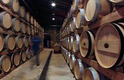 在一wineyard的桶在马略卡海岛  库存图片