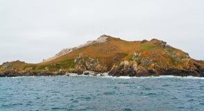 在七个海岛的一个遥远的鸟类保护区 图库摄影