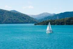 在万宝路声音,新西兰的一艘单独地帆船 免版税库存图片