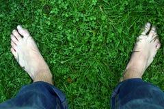 在三叶草领域的赤脚 免版税库存照片