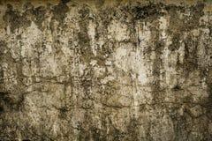 在三宝垄拍的肮脏和生苔墙壁照片印度尼西亚 免版税库存图片