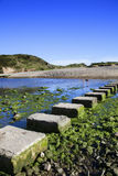 在三峭壁海湾,威尔士的垫脚石 免版税库存照片