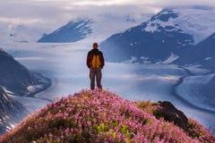 在三文鱼冰川的远足 免版税库存照片